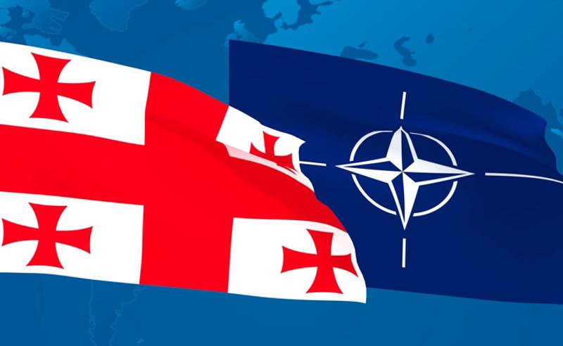 59% მხარს უჭერს საქართველოს NATO-ში გაწევრიანებას, 8% მკაცრად ეწინააღმდეგება - IRI