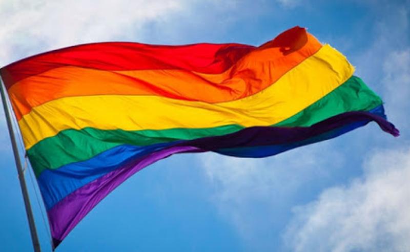 დავიცავთ ნებისმიერი მოქალაქის უფლებას - შსს ჰომოფობიასთან ბრძოლის საერთაშორისო დღესთან დაკავშირებით