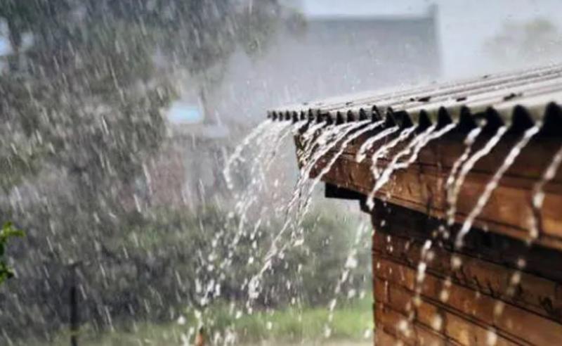 საქართველოში 19 მაისის ჩათვლით წვიმაა მოსალოდნელი