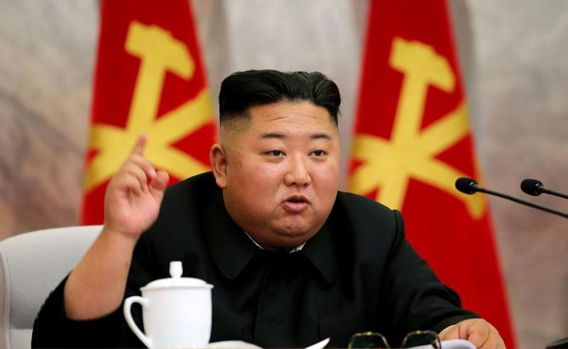 კორონავირუსის შესაჩერებლად ჩრდილოეთ კორეაში კატებს და მტრედებს დახოცავენ