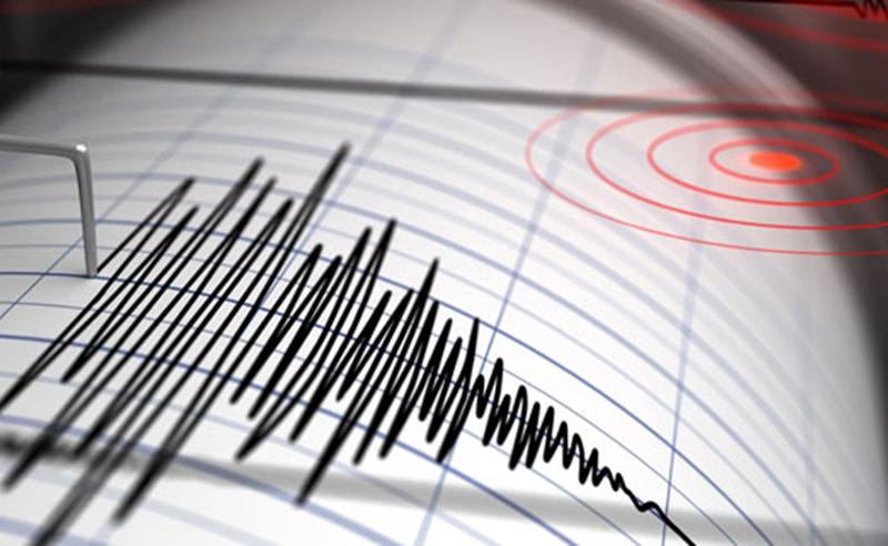 საქართველოში 11 წუთის ინტერვალით  ორი მიწისძვრა მოხდა