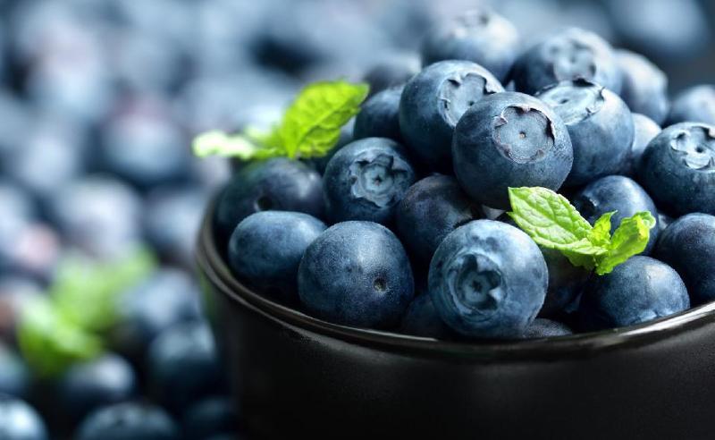რუსეთმა ქართული ხილის რეალიზაციაზე შეზღუდვები დააწესა - მოცვის მწარმოებელი კომპანიის დამფუძნებელი