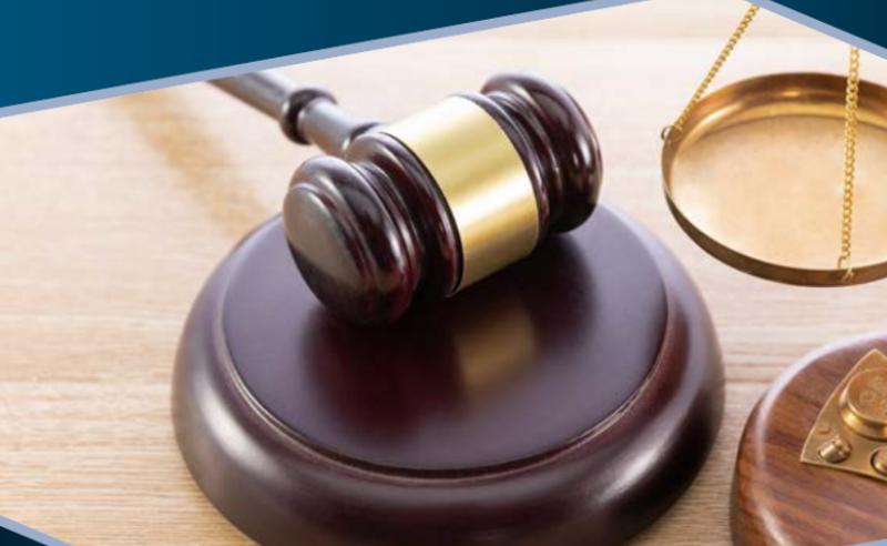მოსამართლეთა გამოხატვის თავისუფლების ფარგლები - TI-ის კვლევა