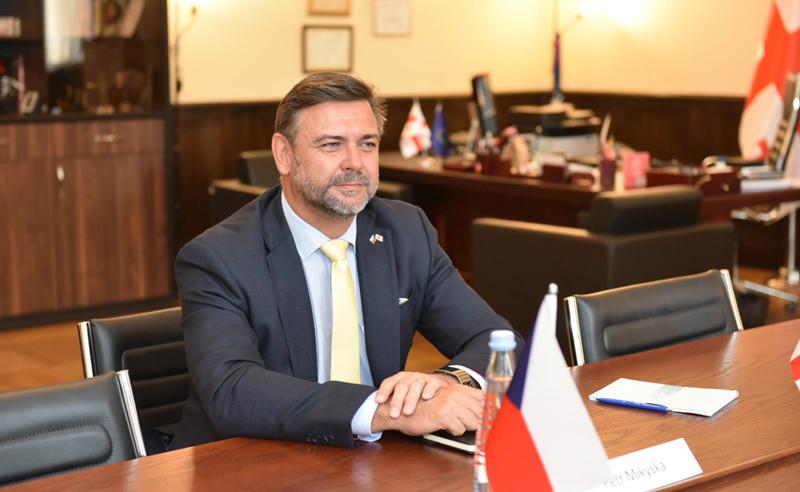 """""""საქართველოში დემოკრატიის ბედი სასწორზეა"""" - ჩეხეთის ელჩი"""