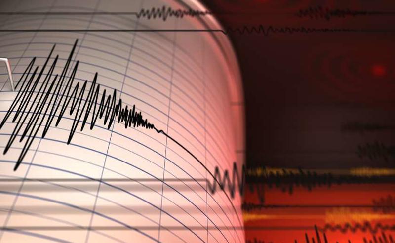 სოფელ სამებასთან 3.5 მაგნიტუდის მიწისძვრა მოხდა