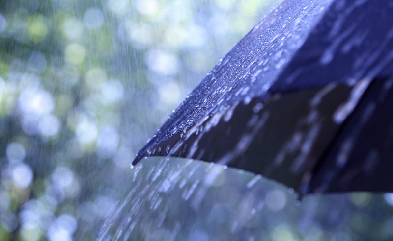 წვიმა, ქარი და ზღვაზე ღელვა  - სინოპტიკოსების პროგნოზი
