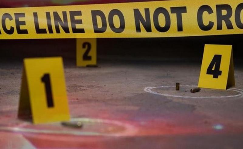 მკვლელობა წინანდალში - საქმეში მესამე იარაღი გამოჩნდა