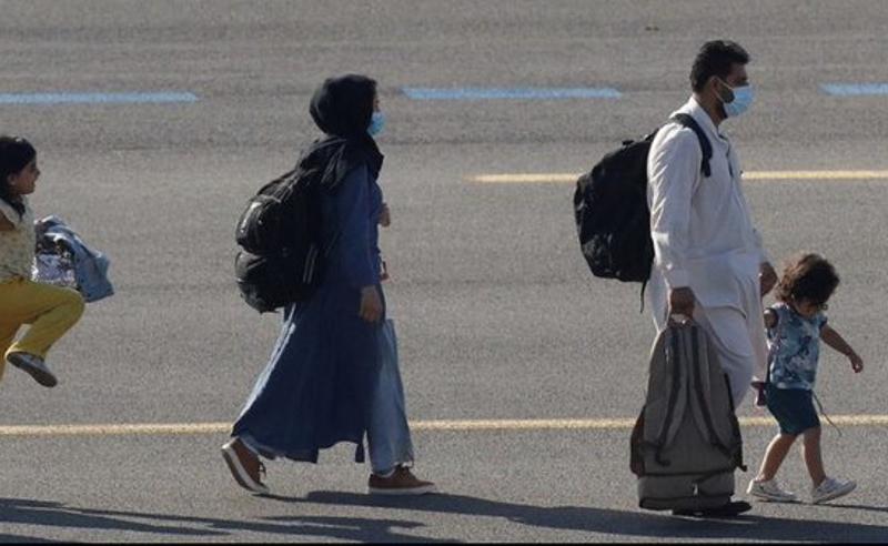 თალიბანი  ავღანეთში გოგოებისა და ბიჭების ერთად სწავლას კრძალავს