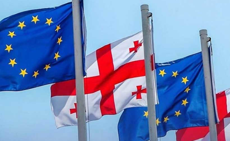 სანამ ადამიანის უფლებათა ევროპული სასამართლო განიხილავს საქმეს, სააკაშვილი უნდა გათავისუფლდეს - ევროპარლამენტარები